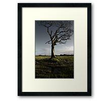 The Rihanna Tree, Singing Framed Print