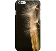"Dandelions... ""Paardebloem"" (South Africa Wild Flower From The Free State) iPhone Case/Skin"