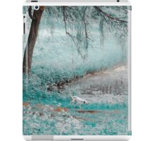 Pond Under the Shadow Willow. Nature in Alien Skin iPad Case/Skin
