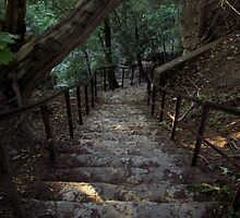 Crooked Stairs by chrissy2323