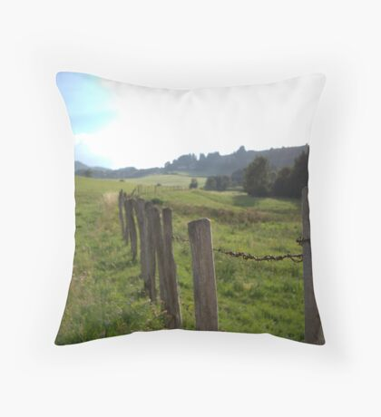 between two worlds Throw Pillow