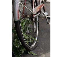 Forgotten Transportation Photographic Print