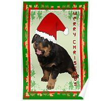 Cute Merry Christmas Puppy In Santa Hat Poster