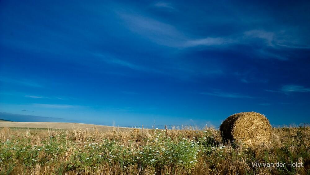 Haystack, harvest by Viv van der Holst