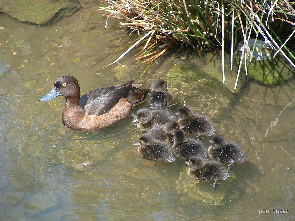 Big Family by paul boast