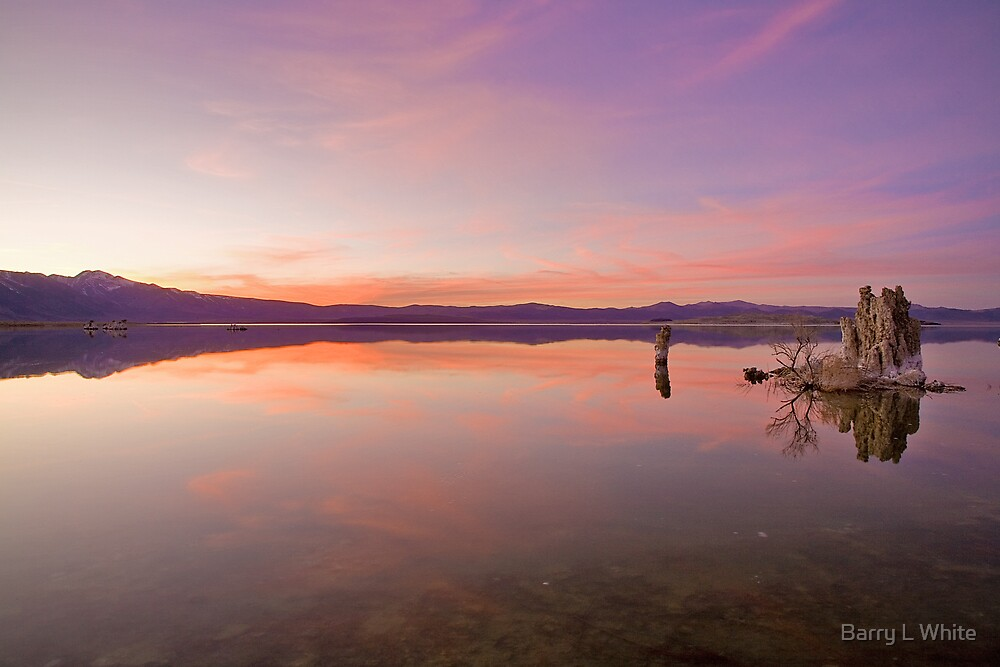 Mono Lake at Sunset #2 by Barry L White