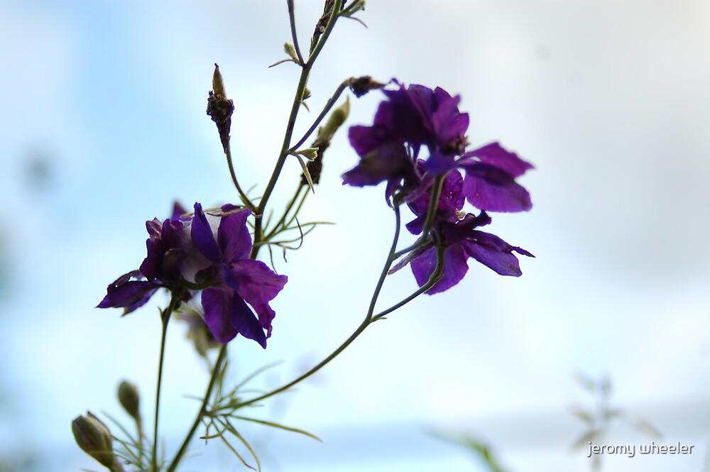 purple by jeromy wheeler