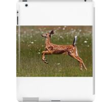 Summer Fawn - White-tailed Deer iPad Case/Skin