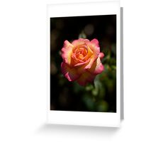 Une Belle Rose Greeting Card