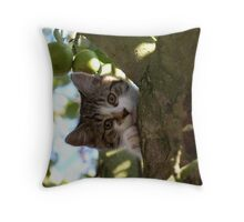 What cats do best! Throw Pillow