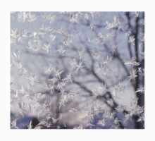 Frosted glass 3 Kids Clothes