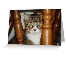 Forest of chairs Greeting Card