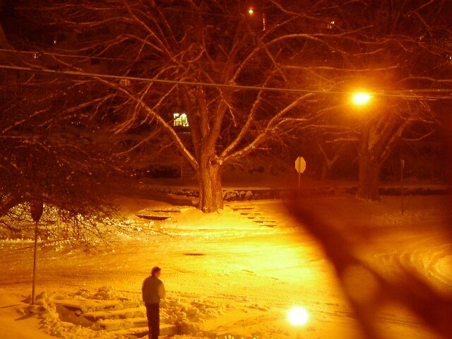 night lights by madvlad