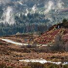 Trossachs National Park in Scotland by Jeremy Lavender Photography