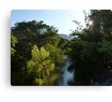 nature's lighting II - iluminación de la naturaleza Canvas Print