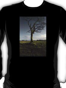 The Rihanna Tree, Singing T-Shirt