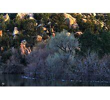 Cottonwood Dawn, Prescott Lake, Prescott, AZ Photographic Print