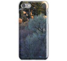 Cottonwood Dawn, Prescott Lake, Prescott, AZ iPhone Case/Skin