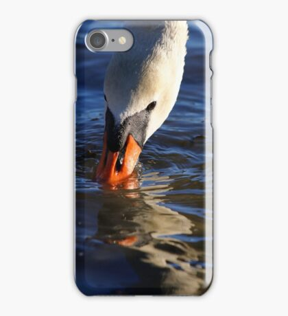 Cynus olor iPhone Case/Skin