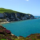 needles at alum bay by paul777