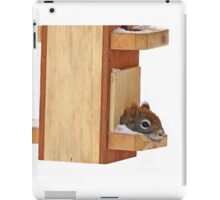 Anyplace is home when its cold - Red Squirrel iPad Case/Skin