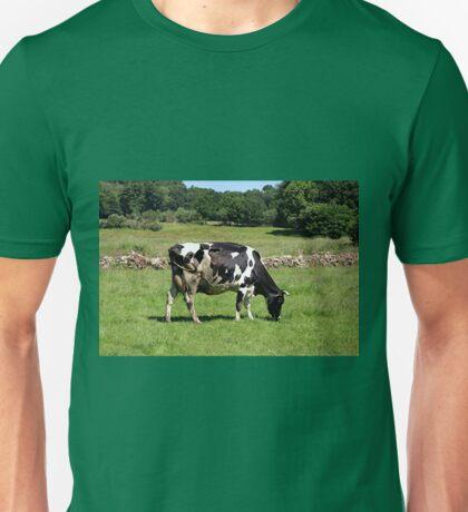 Black & white dairy cow , El Camino, Spain Unisex T-Shirt