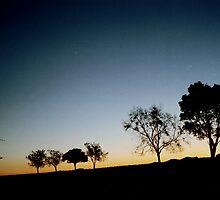 Silhouettes of Fredrickton by Lachlan Kent