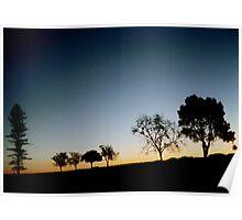 Silhouettes of Fredrickton Poster