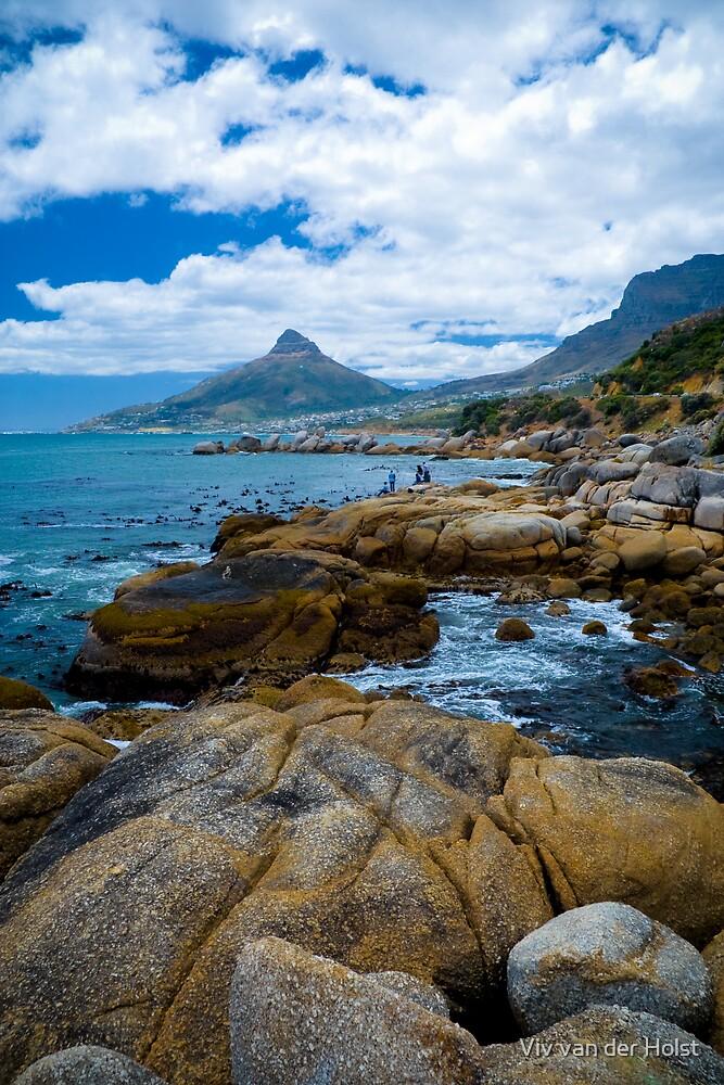 Coast near Cape town by Viv van der Holst