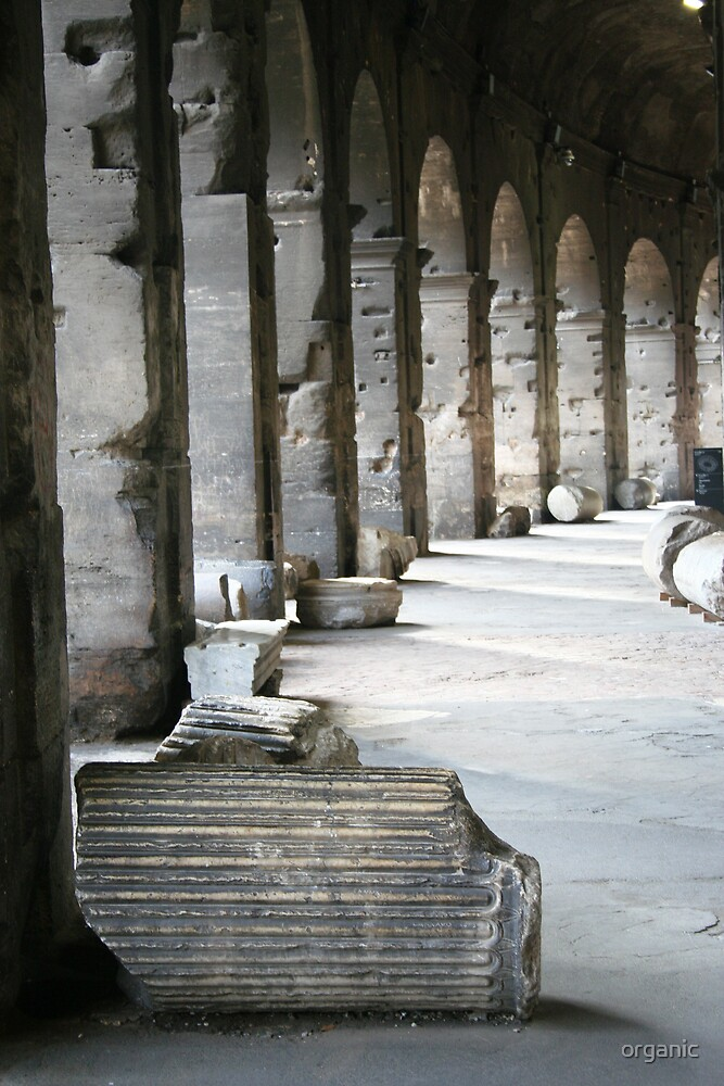 Inner Columns/Colliseum, Rome Italy by organic