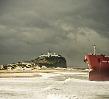Pasher Bulker - Effects of Nature by James Thomas