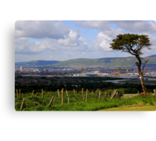 Another Tree With A View Canvas Print