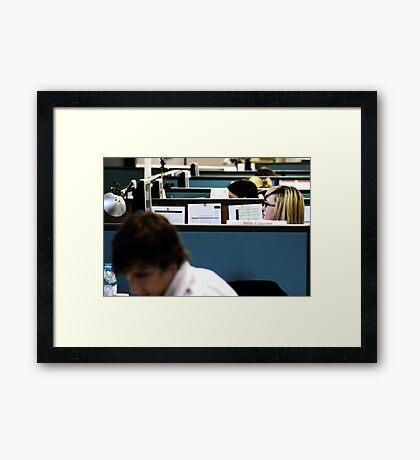 The Chook Run Framed Print