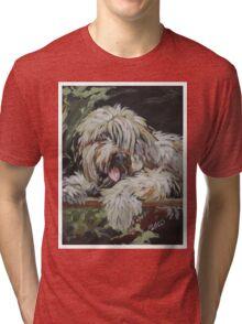 Pet Portrait  Tri-blend T-Shirt