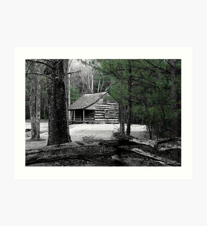 Carter Shields Cabin VIII Art Print