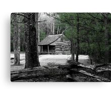 Carter Shields Cabin VIII Canvas Print