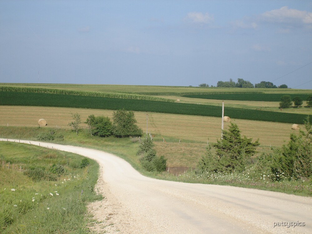 Road Less Traveled by patsyspics