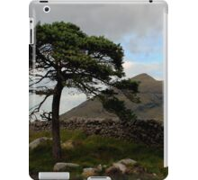 Mourne Country iPad Case/Skin