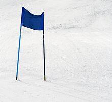 Ski Gates by Walter Quirtmair