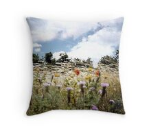 BLOWN BY THE WIND. Throw Pillow