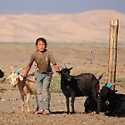Girl assisting in milking goats in Mongolia by Patrick Belser