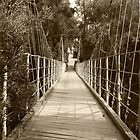 1912 Suspension Footbridge  by heatherfriedman