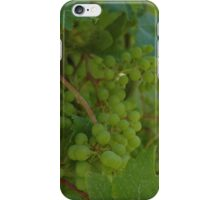 Grape Vines iPhone Case/Skin