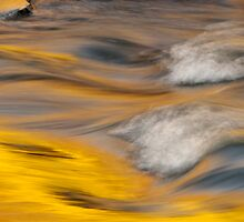 Golden Rapids by jayobrien