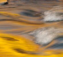 Golden Rapids by jayobrien