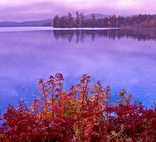 Sunrise on Raquett Lake by jayobrien