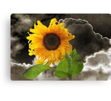 Summer In A Storm Canvas Print