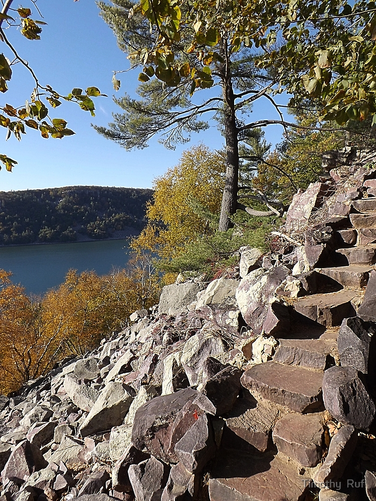 Stone Stairs by Timothy  Ruf