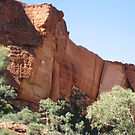 Kings Canyon, Northern Territory, Australia by Stephen  Shelley