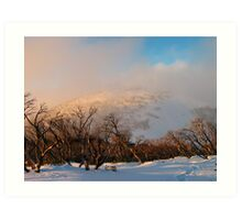 Feathertop backcountry Art Print